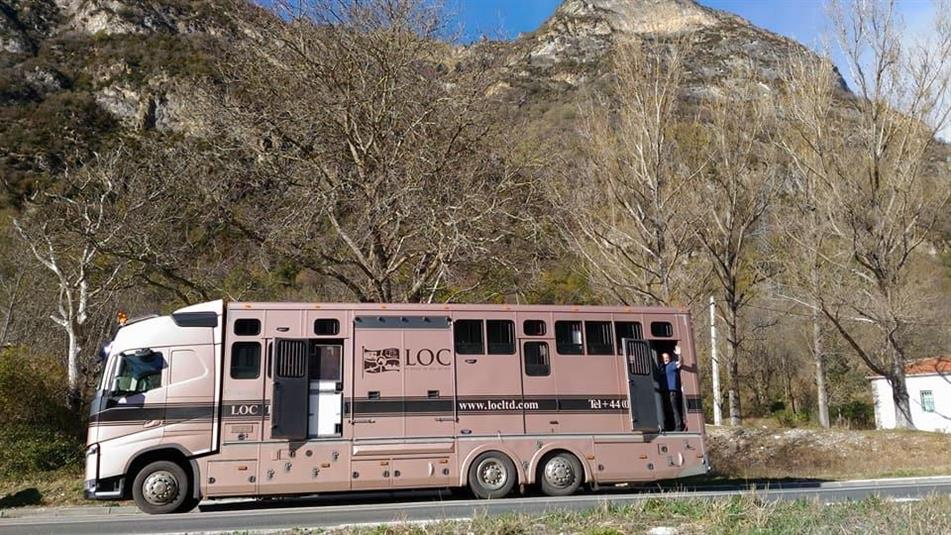 TRANSPORTING HORSES OVERSEAS - WHAT IT ENTAILS